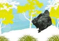岩場で座り込むゴリラ