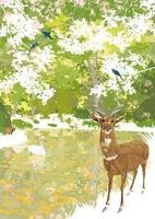 森のなか池の前で佇むレイヨウと青い鳥