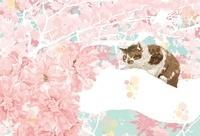 桜のなか枝に乗る猫