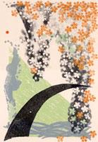 サクラと水の流れ 02427000020| 写真素材・ストックフォト・画像・イラスト素材|アマナイメージズ
