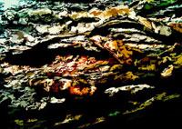 風景のイメージのイラスト 02427000048| 写真素材・ストックフォト・画像・イラスト素材|アマナイメージズ