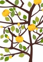黄色い花の咲く木のイラスト
