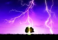 雷の落ちる平原と木