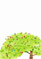 木に飾り付けをすることり 02427000186| 写真素材・ストックフォト・画像・イラスト素材|アマナイメージズ