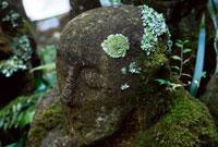 愛宕念仏寺の羅漢さん 02431000011| 写真素材・ストックフォト・画像・イラスト素材|アマナイメージズ
