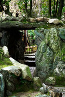 相楽園 02431000015| 写真素材・ストックフォト・画像・イラスト素材|アマナイメージズ