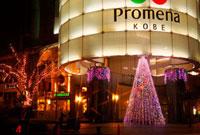 神戸ハーバーランドPromenaのイルミネーション 02431000020| 写真素材・ストックフォト・画像・イラスト素材|アマナイメージズ