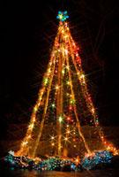 神戸市立布引ハーブ園のツリー 02431000034| 写真素材・ストックフォト・画像・イラスト素材|アマナイメージズ