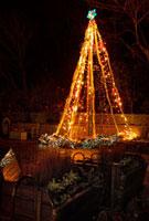 神戸市立布引ハーブ園のツリー 02431000035| 写真素材・ストックフォト・画像・イラスト素材|アマナイメージズ