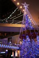 新神戸オリエンタルアベニューのイルミネーション 02431000038| 写真素材・ストックフォト・画像・イラスト素材|アマナイメージズ