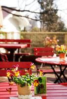 道端のカフェの赤いテーブル 02431000061| 写真素材・ストックフォト・画像・イラスト素材|アマナイメージズ