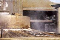 有馬天神社の天神泉源 02431000078| 写真素材・ストックフォト・画像・イラスト素材|アマナイメージズ