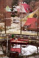 六甲山牧場 02431000095| 写真素材・ストックフォト・画像・イラスト素材|アマナイメージズ