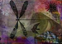 トンボのいる風景 02432000474| 写真素材・ストックフォト・画像・イラスト素材|アマナイメージズ