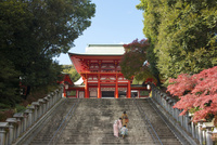 七五三参りで近江神宮に参拝する親子を階段下より望む 02433005199  写真素材・ストックフォト・画像・イラスト素材 アマナイメージズ