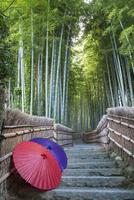 化野念仏寺にある竹林の坂道