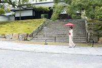 青蓮院の参道を歩く和装の女性 02433009788| 写真素材・ストックフォト・画像・イラスト素材|アマナイメージズ