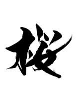 桜 02444000071| 写真素材・ストックフォト・画像・イラスト素材|アマナイメージズ