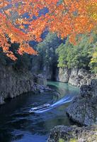 瀞峡の紅葉