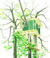木々とツリーハウス 02461000008| 写真素材・ストックフォト・画像・イラスト素材|アマナイメージズ