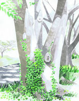 蔦がからまる木