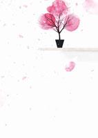 ピンクの花びらと植木