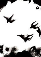 空を飛んでいる黒い鳥