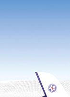 空と飛行機の尾翼