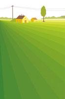 緑に囲まれた家
