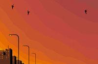 夕日に照らされた街並み 02463000595| 写真素材・ストックフォト・画像・イラスト素材|アマナイメージズ