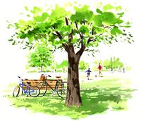 大きな木の下にあるベンチと自転車 02463001046| 写真素材・ストックフォト・画像・イラスト素材|アマナイメージズ