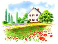 色とりどりの花畑と白い大きな家