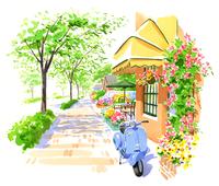 カラフルな花を飾っているお店と並木道