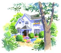 木と花に囲まれた白くて大きな家 02463001080| 写真素材・ストックフォト・画像・イラスト素材|アマナイメージズ