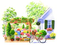 白い家と赤い自転車と色とりどりの花