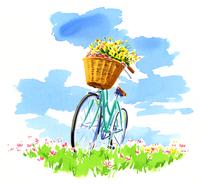 草原に停めてある、バスケットに花を積んでいる自転車 02463001120| 写真素材・ストックフォト・画像・イラスト素材|アマナイメージズ