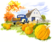 かぼちゃの田畑から見た倉庫 02463001154| 写真素材・ストックフォト・画像・イラスト素材|アマナイメージズ