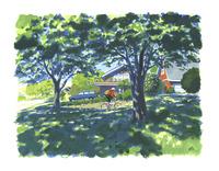 木陰とBMX 02463001279| 写真素材・ストックフォト・画像・イラスト素材|アマナイメージズ