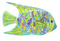 熱帯魚のモチーフ 02463001384| 写真素材・ストックフォト・画像・イラスト素材|アマナイメージズ