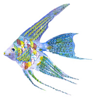 熱帯魚のモチーフ