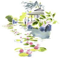 睡蓮の浮かぶ池