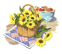 カゴいっぱいの向日葵 02463001576| 写真素材・ストックフォト・画像・イラスト素材|アマナイメージズ