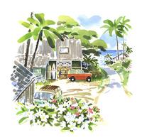 海へと続く南国の道 02463001587| 写真素材・ストックフォト・画像・イラスト素材|アマナイメージズ