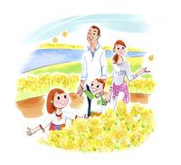 菜の花畑を歩く家族