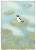 蓮の葉の上で金魚を見つめる猫