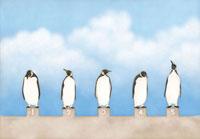 スタート台に並ぶ5匹のペンギン
