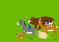 イヌ ロバ 鳥 クマ ブタ シカ ネコ 02468000008| 写真素材・ストックフォト・画像・イラスト素材|アマナイメージズ