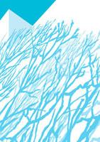 建物に映る青い影 02474000001| 写真素材・ストックフォト・画像・イラスト素材|アマナイメージズ
