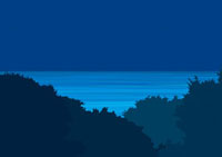 真夜中の山の高台から光る海を見下ろす