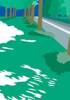 道路が抜ける公園の緑の木漏れ日